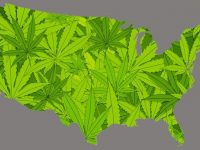 Marijuana Legalization Around the World Pros and Cons