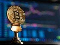 Blockchain Comprehensive Guide & Use Cases