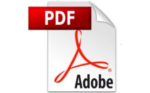 PDFBear: The Top Choice To Effortlessly Manage PDF Files