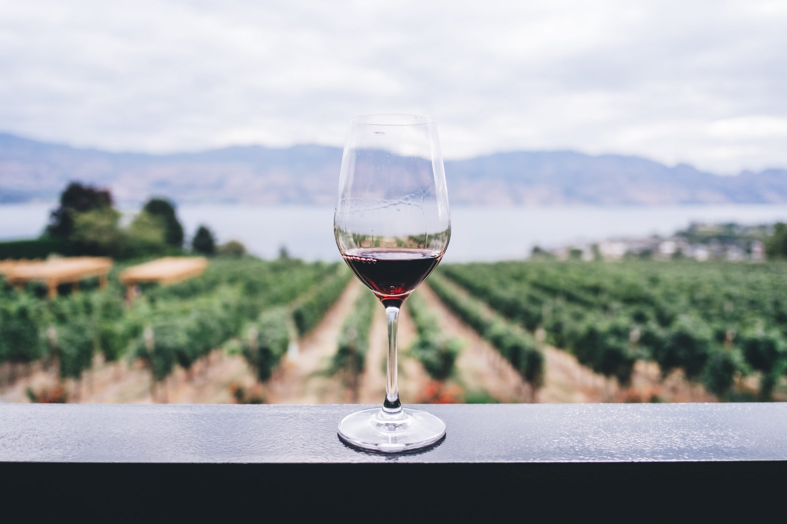 7 Cool Wine Types You Didn't Know Existed